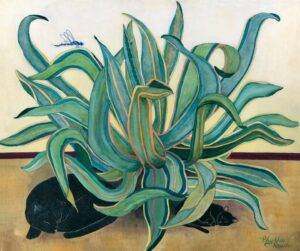Phyllis Rauch. Cat, kitten and maguey. Photo reproduced courtesy of the artist.