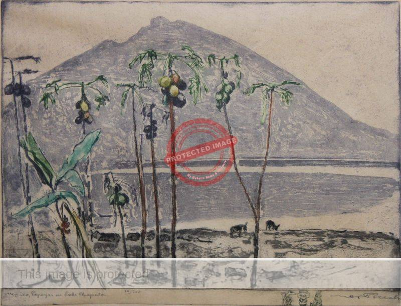 Max Pollak: Etching of Lake Chapala.