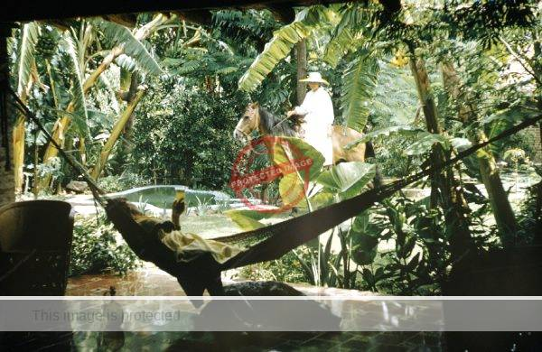 Leonard McCombe. 1957. Neill James (hammock) and Zara in the gardens of Quinta Tzintzuntzan. (Life)