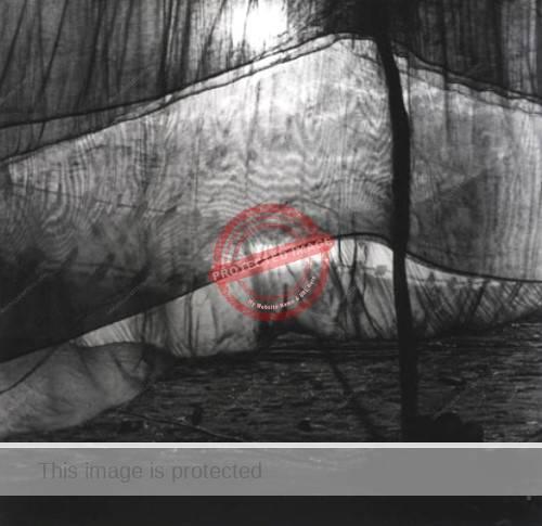 Stanley Twardowicz. c.1948. Fishing nets, Ajijic. (Credit unknown)