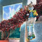 A Christmas Potpourri of Lake Chapala Links